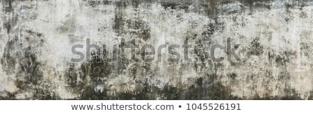 grunge · muur · venster · oude · verweerde · geschilderd - stockfoto © joyr