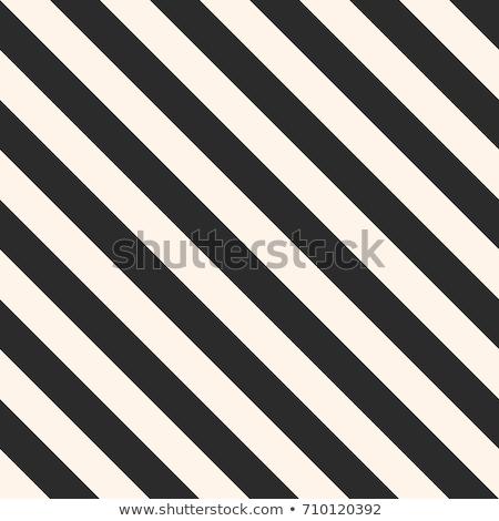 Repeating Slanted Stripes Modern Texture. Monochrome Geometric Seamless Pattern. Stock photo © Samolevsky