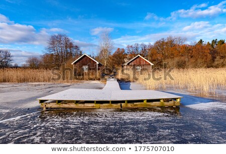 Pier glaciale lac hiver plage nature Photo stock © IS2
