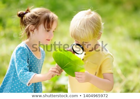 Girl looking at flower with boy Stock photo © IS2