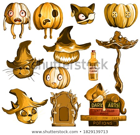 autumn objects theme set 1 stock photo © clairev