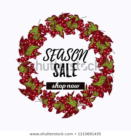 Season sale desiign with viburnum wreath   stock photo © TasiPas