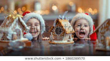 family preparing for Christmas Stock photo © choreograph