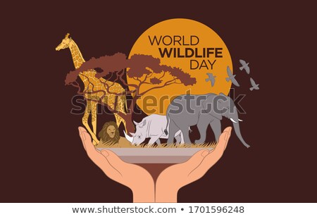 Przyrody dzień safari internetowych banner dzikie zwierzęta Zdjęcia stock © cienpies