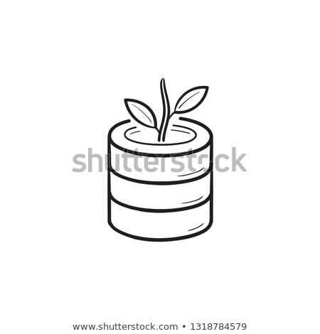 Database crescita impianto contorno doodle Foto d'archivio © RAStudio