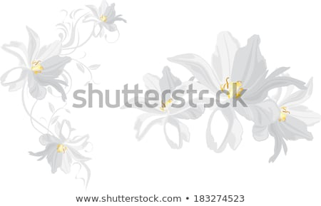 Spring deco with artificial tulips isolated on white Stock photo © manfredxy