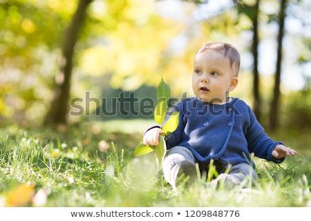 Baba tizenegy hónapok erdő jó idő Stock fotó © Lopolo