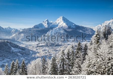 Town of Berchtesgaden and Alpine landscape panoramic view Stock photo © xbrchx