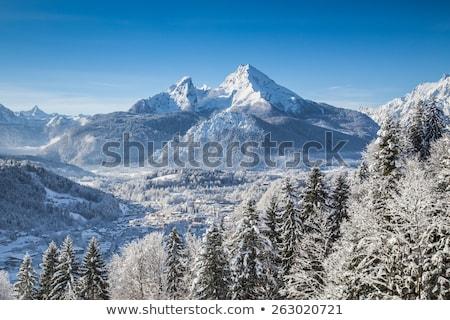 Ville alpine paysage panoramique vue région Photo stock © xbrchx