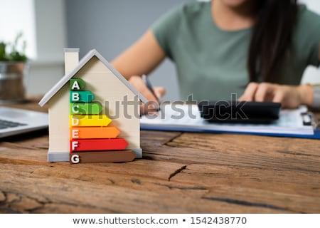 Donna energia efficiente casa efficienza energetica tasso Foto d'archivio © AndreyPopov