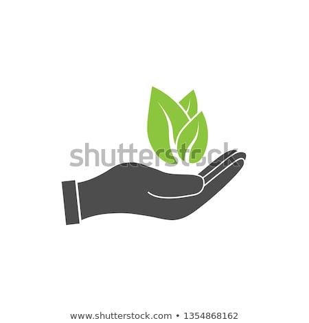 hand sign of environmental protection Stock photo © nezezon
