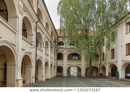 ヴィルニアス リトアニア 1 美しい 大学 ストックフォト © borisb17