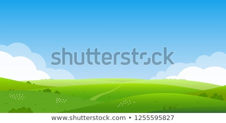 Beautiful landscape with green lawn and skyline with clouds, shining sun, nobody, summer nature Stock photo © robuart
