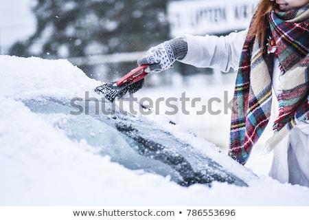 ice scraper Stock photo © FOKA