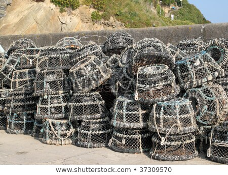 Lots of lobster pots in Cornwall, UK Stock photo © latent