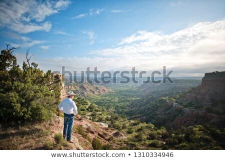 Rancher Surveys his Land Stock photo © lisafx