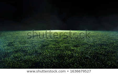 Wide View of Soccer Pitch Stock photo © ca2hill