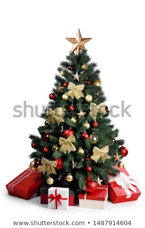 christmas tree isolated on white stock photo © inxti
