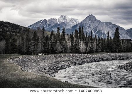 Tájkép egyenetlen hegyek erdő fölött völgy Stock fotó © jrstock