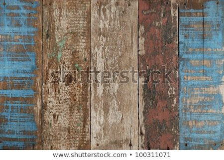 Old rotten door with blue paint Stock photo © Anterovium