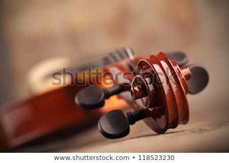 Close-up of a violin. Stock photo © Nejron