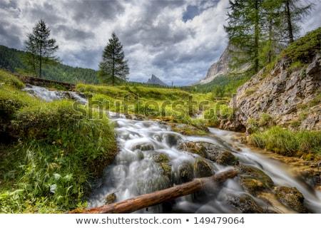 風光明媚な 山 ストリーム イタリア語 アルプス山脈 ヨーロッパ ストックフォト © haraldmuc