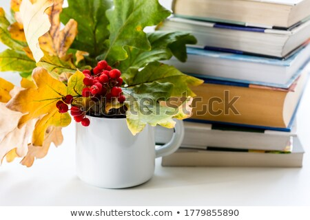 a stack of books on a background of mountain ash stock photo © valeriy