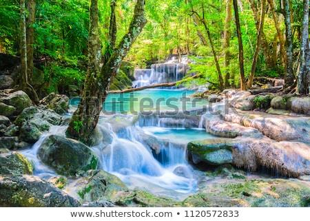 çağlayan çağlayan güzel park yeşil bitki Stok fotoğraf © miracky