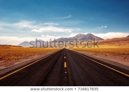 Sivatag út jelzőtábla nyár évszak homok Stock fotó © bezikus