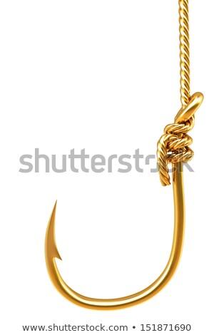 Dorado peces gancho brillante blanco pesca Foto stock © magraphics