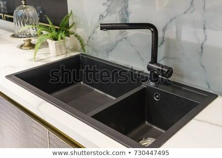 Mosdókagyló konyha dekoráció kép mosogató ház Stock fotó © maknt