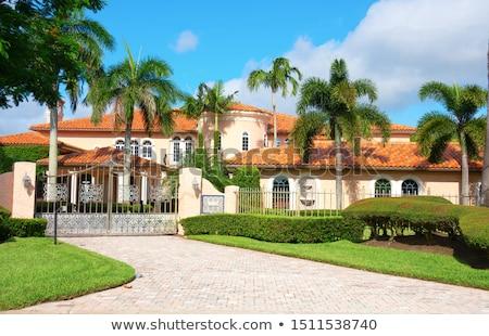 spanish style home stock photo © digifoodstock