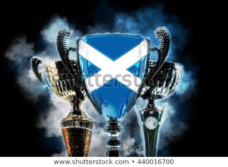 трофей Кубок флаг Шотландии Цифровая иллюстрация Сток-фото © Kirill_M