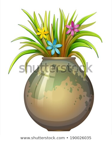 a big flowervase with flowering plants stock photo © bluering