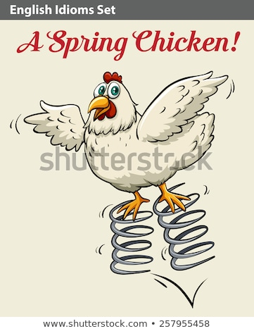 Idiom poster for spring chicken Stock photo © bluering