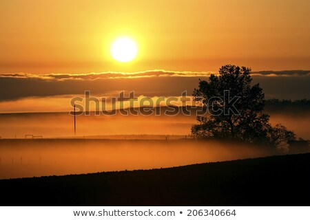 Grond mist zonsopgang saskatchewan wolken landschap Stockfoto © pictureguy