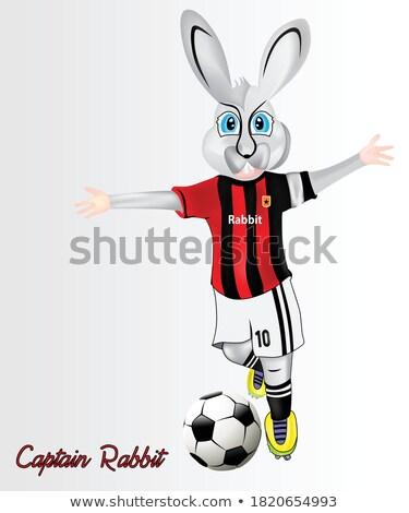 Cartoon sonriendo futbolista vacaciones deportes animales Foto stock © cthoman