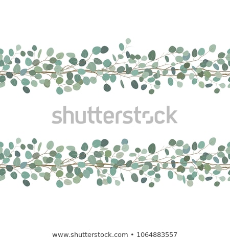 Set seamless floral borders Stock photo © PiXXart