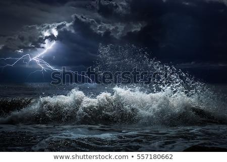 Onweersbui zee illustratie water natuur ontwerp Stockfoto © bluering