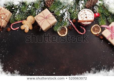 Navidad · tarjeta · de · felicitación · chocolate · caliente · malvavisco · piedra - foto stock © karandaev