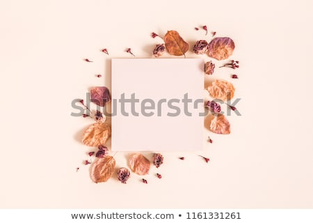 チョコレート · コーヒー · シナモン · 花 · 黄色の花 · クローズアップ - ストックフォト © yuliyagontar
