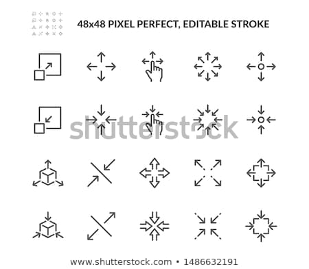 Resize Vector Icon Stock photo © smoki