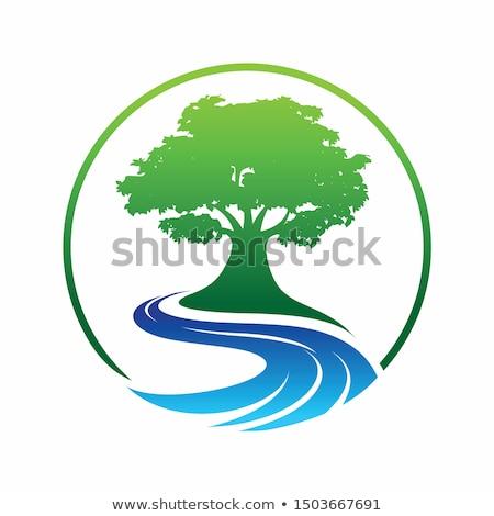 風景 川 木 ベクトル デザイン 自然 ストックフォト © blaskorizov