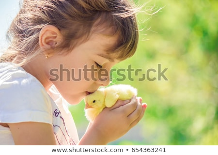 girl and farm animals at home stock photo © colematt