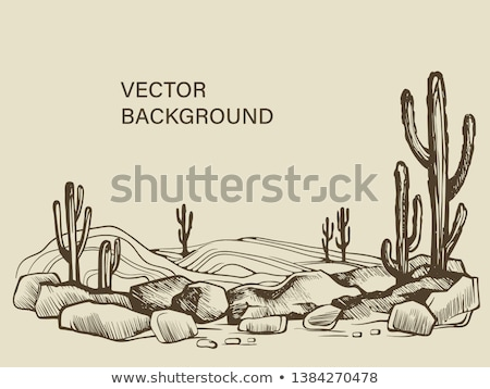 Hand drawn sketch pattern, vector cactus Stock photo © netkov1