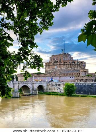 view of the Tiber river, Rome  Stock photo © borisb17