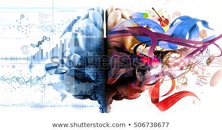 left and right brain icon set stock photo © bspsupanut