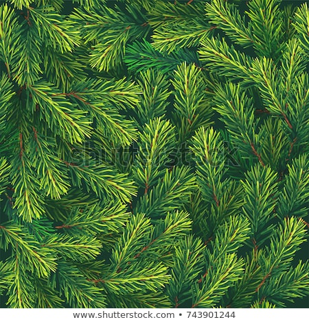 Klasszikus végtelen minta örökzöld növények tél dekoratív Stock fotó © Artspace