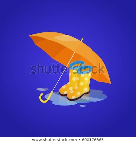 Rain boots. Isolated color icon. Winter footwear vector illustration Stock photo © Imaagio