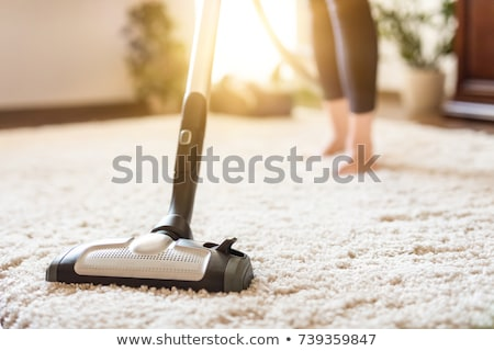 Cleaner Vacuum Cleaning Rug Dirt At Home Stock photo © AndreyPopov